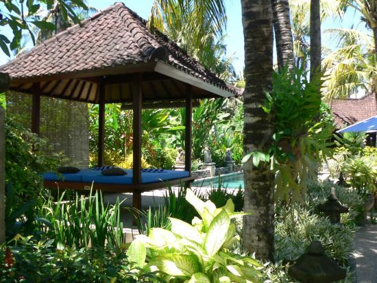 La villa Kishi-Kishi : Pool and  garden