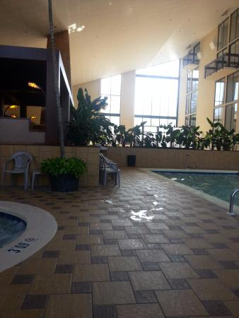 Holiday Inn-Asheville Biltmore West: Indoor pool next to hot tub