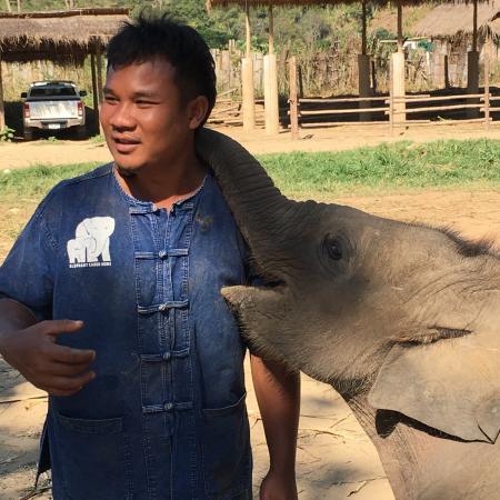 Фотография Elephant Carer Home