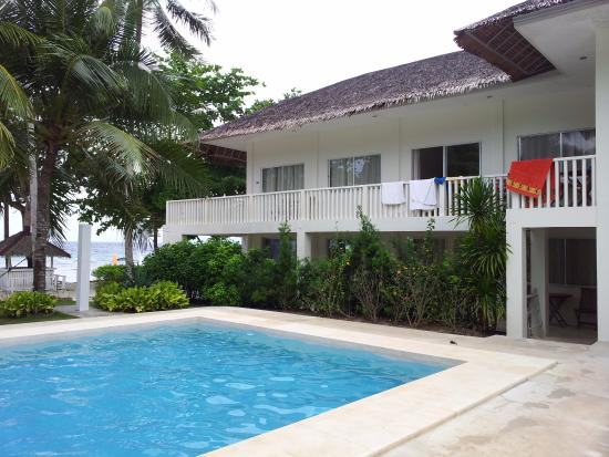 the pool picture of momo beach house panglao island tripadvisor rh tripadvisor com au