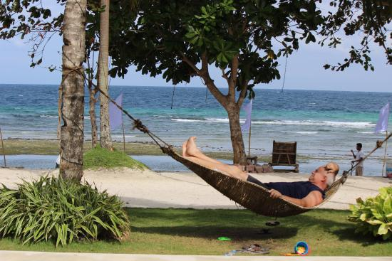 amorita beach resort picture of momo beach house panglao island rh tripadvisor com