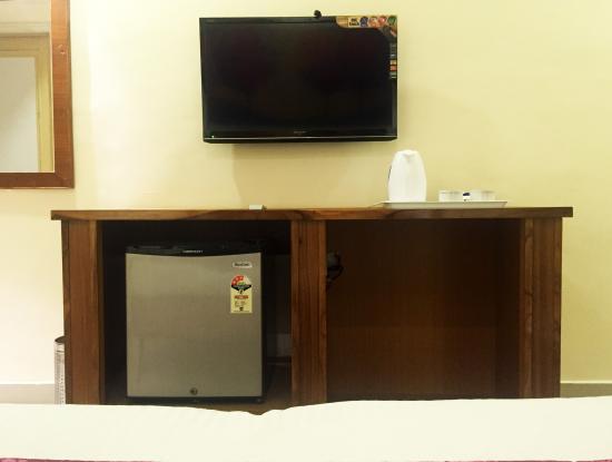 Hotel Veenus International: mini fridge