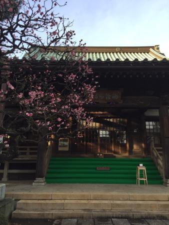 Saicho-ji Temple