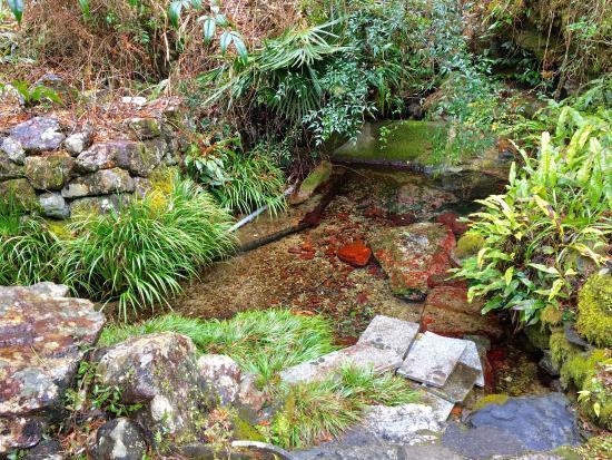Renko-ji Temple Spring Water