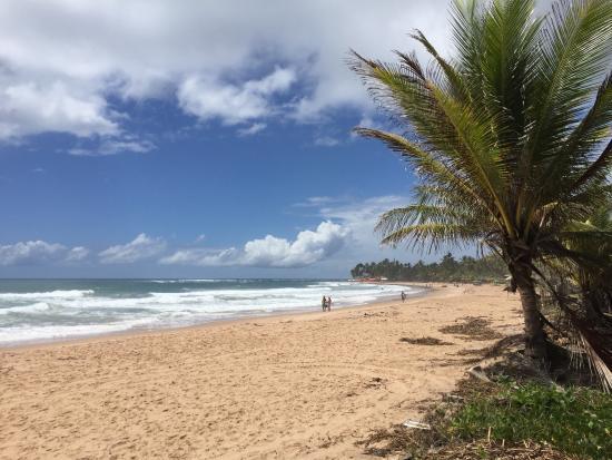 Praia de Taipus de Fora