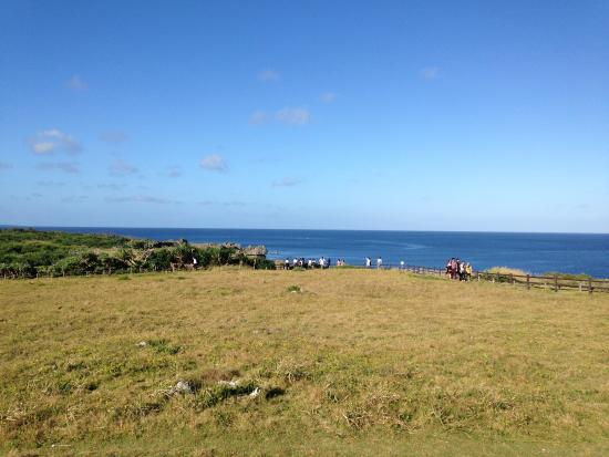 Manzamo - Picture of Cape Manza, Onna-son - TripAdvisor