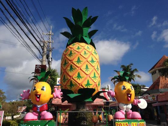 名护菠萝园