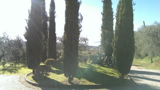 Relais Corte Benedetto: IMAG3548_large.jpg