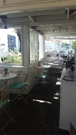 Oak Tree Coffee Shop: Lovely place to have coffee, cake and scones♡