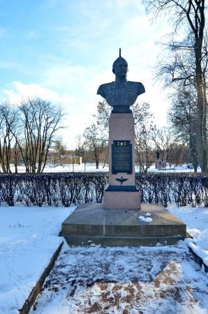 Bust N.V. Chelnokova