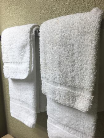 Quality Inn I-15 Miramar: Dirty towels looks like they only folded them back up again instead of changing them with clean