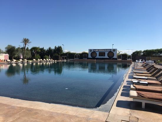 Assez photo1.jpg - Picture of Myah Bay, Marrakech - TripAdvisor AR28