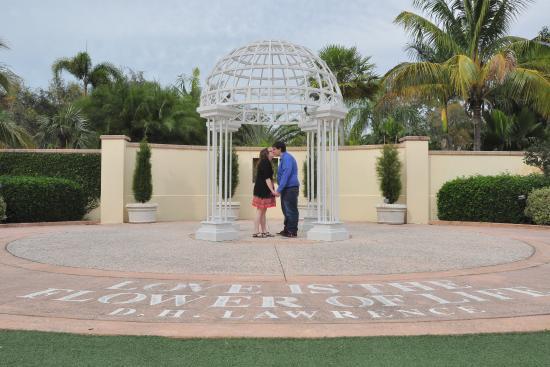 Florida Botanical Gardens Engagement Shoot   #ACrystalClearSoundVideoPhoto