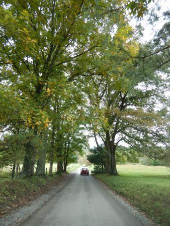 Townsend, TN: photo9.jpg
