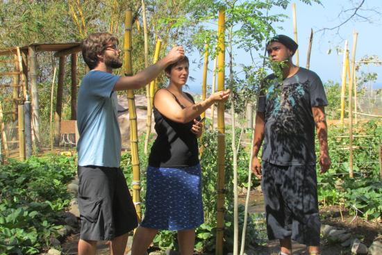 Costa Rica Yoga Spa: Garden Tour