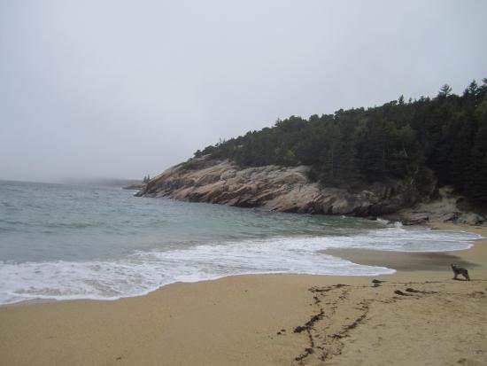 Sand Beach Maine Me