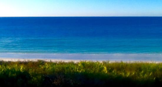 Palms at Seagrove: View from deck