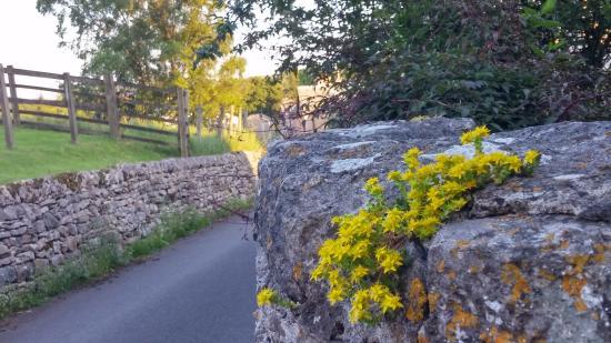 Village road, Orton