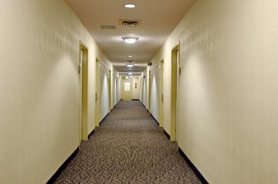 Red Roof Inn San Antonio - Airport: Interior Corridor