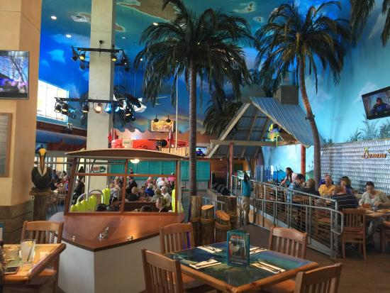 Jimmy Buffett S Margaritaville Restaurant Photo0 Jpg Hollywood Florida