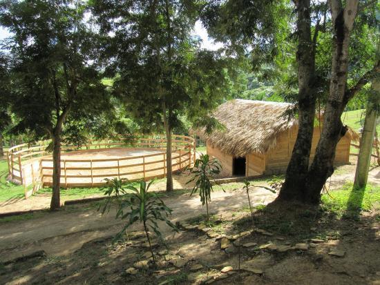Hacienda la Suerte