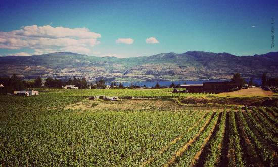 Beaumont & Volcanic Hills | Westside Wine Trail | West Kelowna | Okanagan Valley