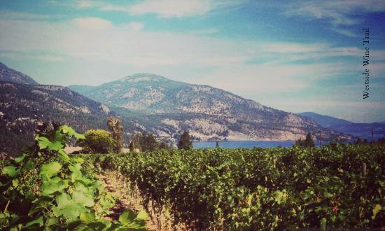 Rollingdale Winery | Westside Wine Trail | West Kelowna | Okanagan Valley