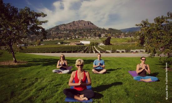 Yoga in the Vineyard | Westside Wine Trail | West Kelowna | Okanagan Valley