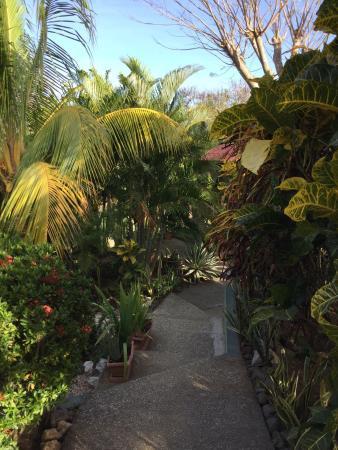 Casa Buenavista Bed & Breakfast: photo1.jpg