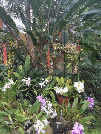 Matthaei Botanical Gardens & Nichols Arboretum: photo5.jpg