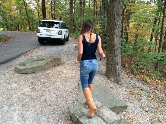 Edwin and Percy Warner Parks: Take a drive through the park and stop at lookouts