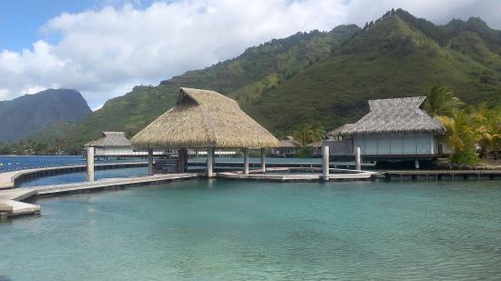 Moorea, Polinesia Prancis: Doplhin Centre