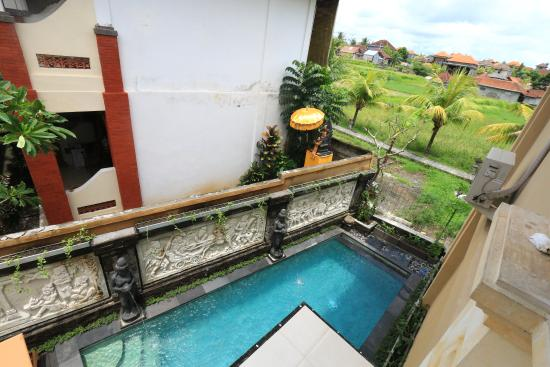 Frangipani Bungalows: Swimming Pool