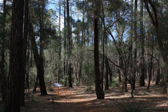 Kalamunda Photos Featured Pictures Of Kalamunda Perth