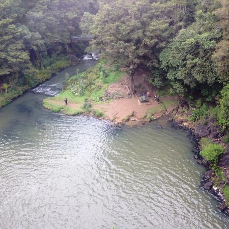 Whangarei, New Zealand: Looking to base of falls from walkway at top