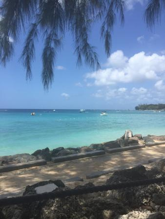 Holetown, Barbados: View from table