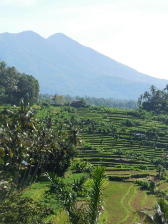 Pondok Batur Indah: Prachtig zicht vanuit je bed