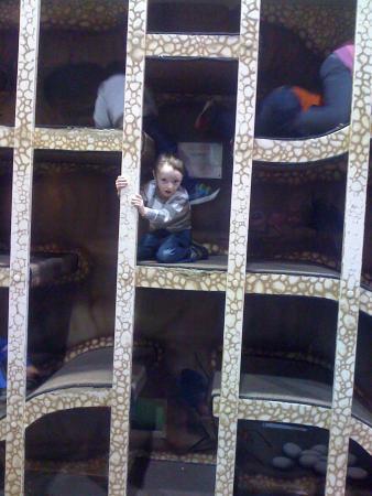 Muncie Children's Museum: .....