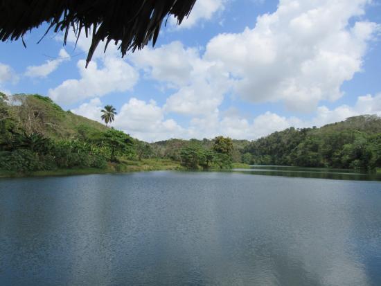 Bayahíbe, República Dominicana: cruising down the jungle river