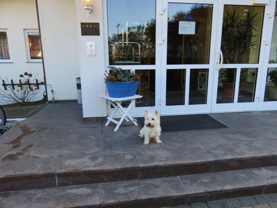 Hotel Nordkap : Mein Hund bewacht hier den Eingangsbereich
