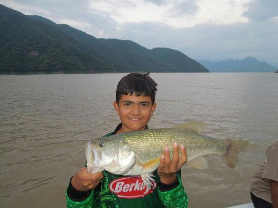 Coras Lodge : The family fantastic fishing.3111990106 nextelCoraslodge@gmail.com