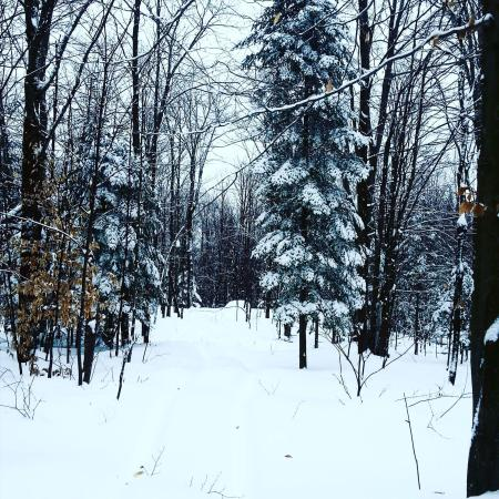 Labelle, Canada: Nice trails