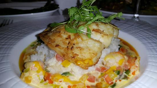 Mesa Grill: Excellent fusion of South American & Caribbean cuisine!