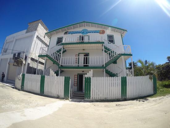 Pedro's Inn Backpacker Hostel: The Hotel