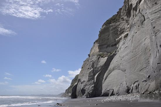 Whitecliffs near New Plymouth NZ