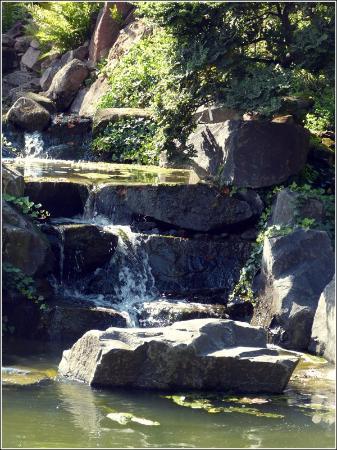 Wasserfall Bild Von Japanischer Garten Japanese Garden