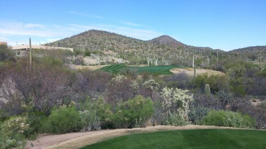 Starr Pass Golf Club: Great course