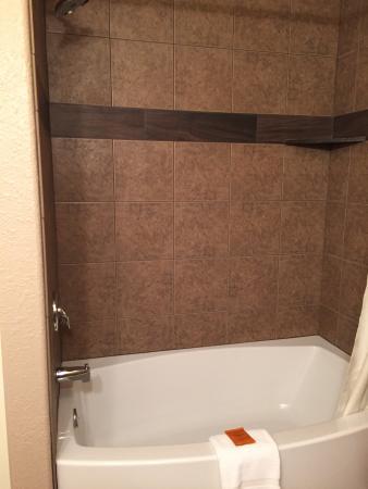 The Pacific Inn Motel: Bathroom