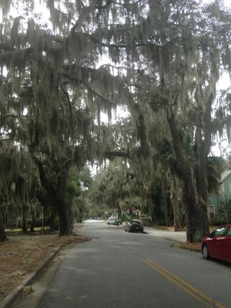 Brunswick Manor: Street View