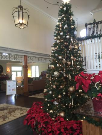 worldmark orlando kingstown reef christmas tree and decorations in the lobby worldmark kingstown